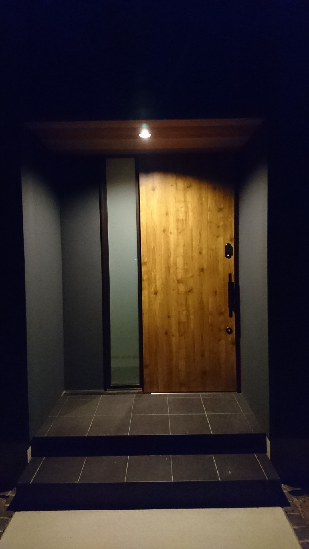 協 玄関 ドア アルミ 三